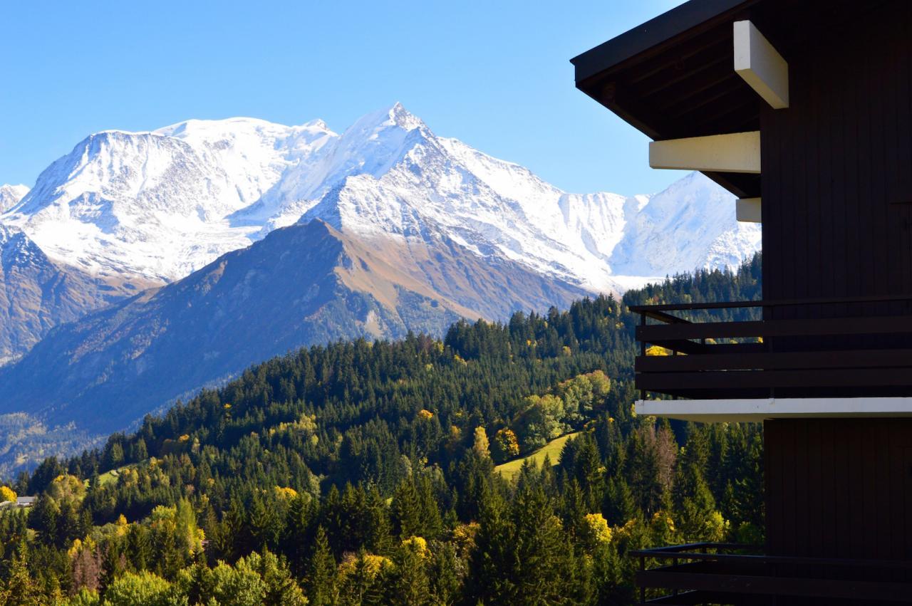 Le Mont Blanc juste face à la résidence Opale !