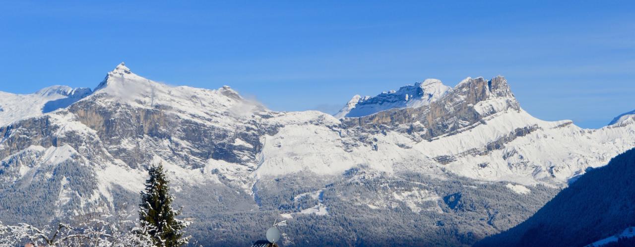 Montagne et foret enneigée