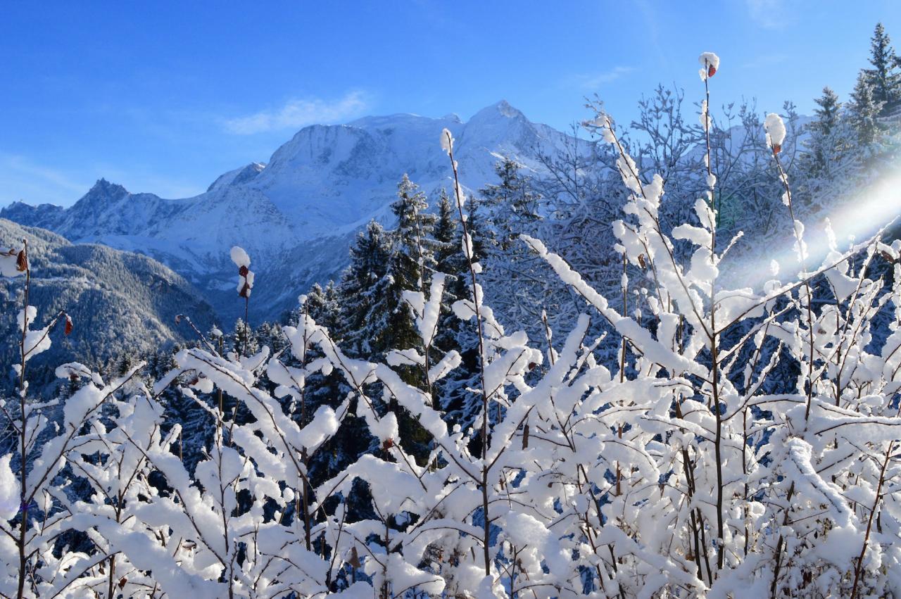 Fragilité de la neige